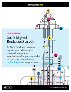 DB 2019 Executive Summary Cover