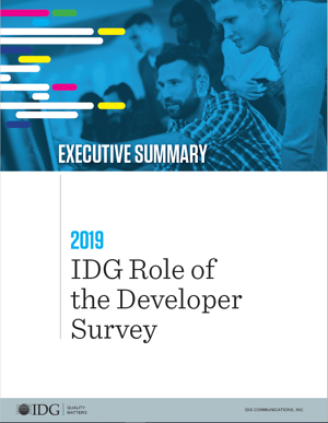 Developer Executive Summary Cover Image