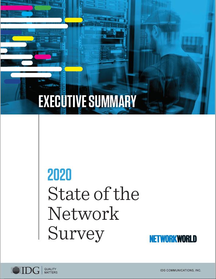 2020 Executive Summary cover
